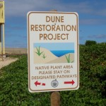 Protecting Coastal Plants within Beach Parks